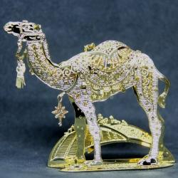 2018 - Camel